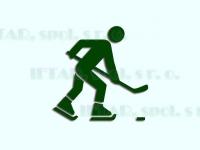 hokej, hokejbal